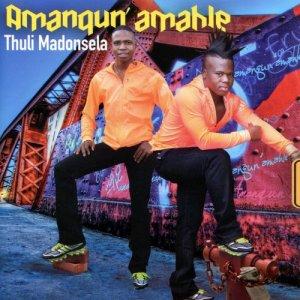 Album Thuli Madonsela from Amanguni Amahle
