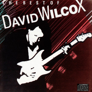 The Best Of David Wilcox 1985 David Wilcox