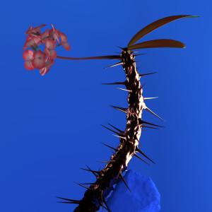 Flume的專輯Hyperreal