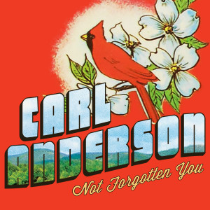 Album Not Forgotten You from Carl Anderson