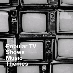 Album Popular TV Shows Music Themes from The TV Theme Players