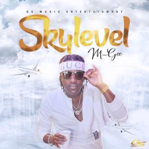 Album Skylevel from M-Gee