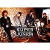 Super Junior Album Bonamana Mp3 Download