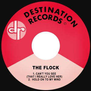 Listen to Can't You See (That I Really Love Her) song with lyrics from The Flock