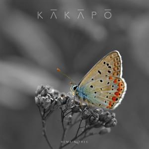 Kakapo的專輯Remain Free