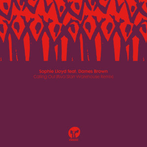 Album Calling Out (feat. Dames Brown) (Riva Starr Warehouse Remix) from Dames Brown
