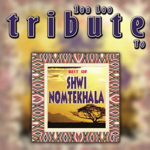 Album Zoo Loo Tribute to Shwi Nomtekhala - Best of from Zoo Loo
