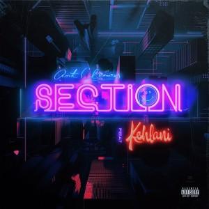 Section (feat. Kehlani) (Explicit) dari Ant Clemons