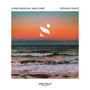 Album Teenage Heart from Jones Meadow