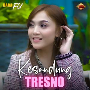 Kesandung Tresno dari Dara Fu