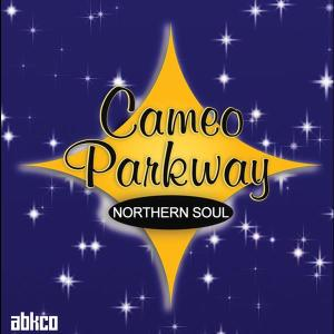 Original Northern Soul Hits From Cameo Parkway 2008 Various Artists