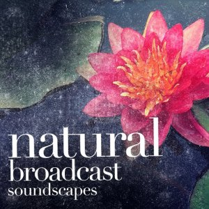 Natural Broadcast Soundscapes
