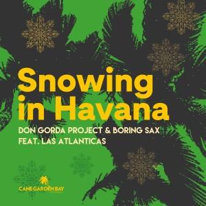 Album Snowing in Havana from Don Gorda Project