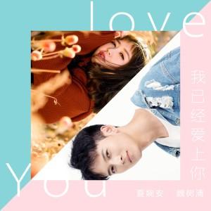 魏树清的專輯我已經愛上你