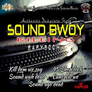 Album Sound Bwoy Killing from BabyBoom