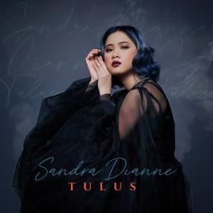 Album Tulus oleh Sandra Dianne