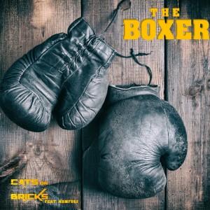 Album The Boxer from Nomfusi