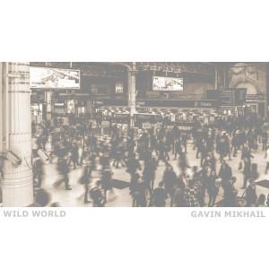 Wild World (Piano Version)