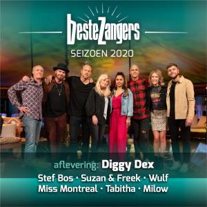 Album Beste Zangers Seizoen 2020 (Aflevering 2 - Diggy Dex) from Various Artists
