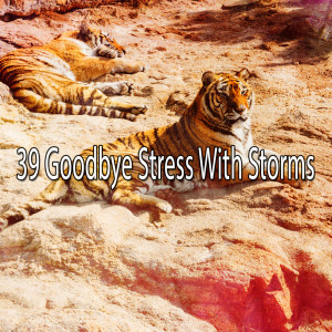 Album 39 Goodbye Stress with Storms from Rain Sounds