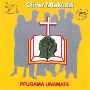 Album Pfugama Unamate from Oliver 'Tuku' Mtukudzi