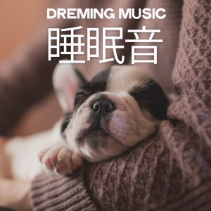 Album Dreaming Music from Various Artists