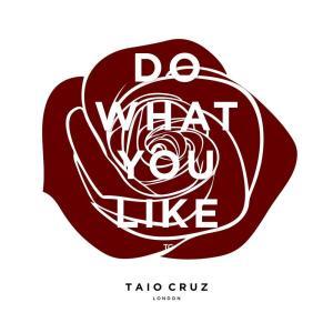 Taio Cruz的專輯Do What You Like
