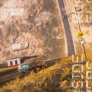 Droeloe的專輯Roadside Flowers