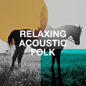 Album Relaxing Acoustic Folk from Acoustic Guitar