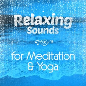 Album Relaxing Sounds for Mediation & Yoga from Relaxation Mediation Yoga Music