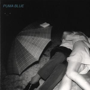 Album Swum Baby (Explicit) from Puma Blue