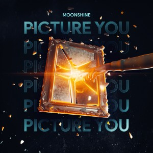 Album Picture You from Moonshine