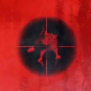 Album Killing The Rats (Explicit) from Kodak Black