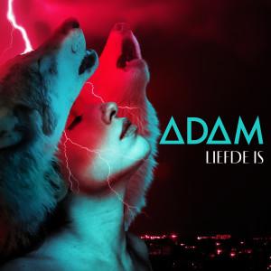 Album Liefde Is from Adam