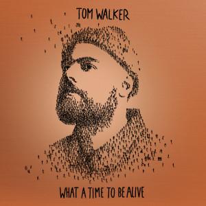 ดาวน์โหลดและฟังเพลง Better Half of Me พร้อมเนื้อเพลงจาก Tom Walker