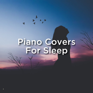 Album Piano Covers For Sleep from Piano Covers Club