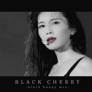 宇野実彩子的專輯BLACK CHERRY -black honey mix-