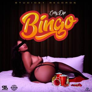 Album Bingo from Corry Dip