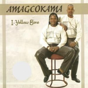 Listen to Ntabezikude song with lyrics from Amagcokama