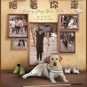 胡杏兒的專輯天使 - 電視劇 : 陪著你走 主題曲