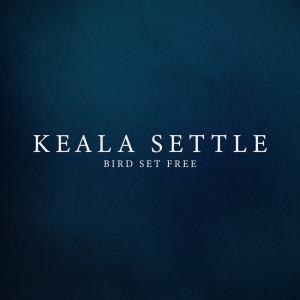 Bird Set Free dari Keala Settle