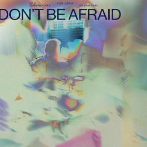 Album Don't Be Afraid (feat. Jungle) (Soulwax Remix) from Diplo
