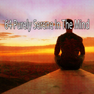 Album 64 Purely Serene in the Mind from Deep Sleep Meditation
