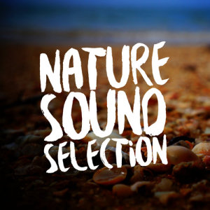 Album Nature Sound Selection from Outside Broadcast Recordings