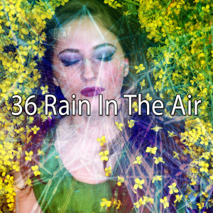 36 Rain in the Air