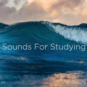 "Relajacion Del Mar的專輯!!"" Sounds For Studying ""!!"