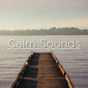อัลบัม Calm Sounds ศิลปิน Nature Sounds Nature Music