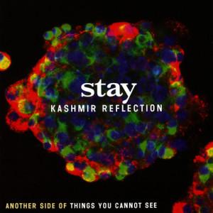 Kashmir Reflection dari Stay
