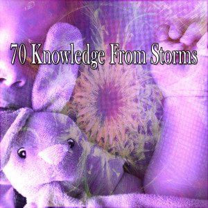 Album 70 Knowledge from Storms from Rest & Relax Nature Sounds Artists