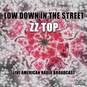 Album Low Down In The Street from ZZ Top